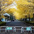 Photos: 南郷上ノ山公園(2)