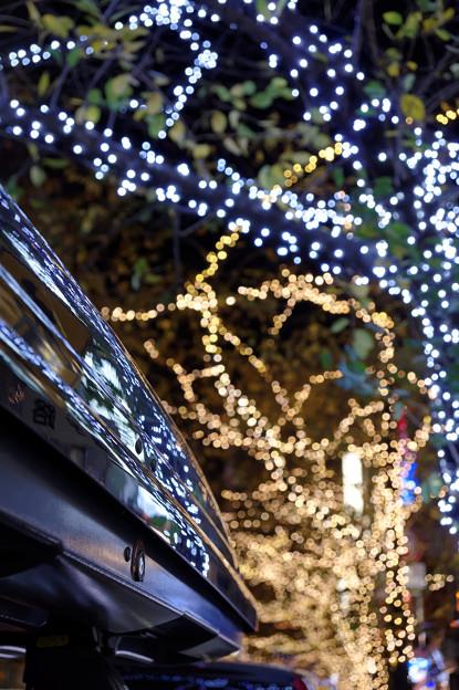 Photos: 八重洲さくら通りのイルミネーション(1)