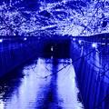 青の洞窟(2)