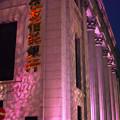 桜色の建物