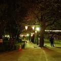 区立隅田川公園