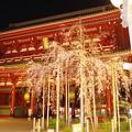 浅草寺(2)