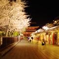 浅草寺(3)