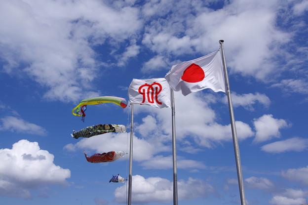 Photos: 県庁の旗