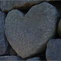 Photos: 20120904_134610