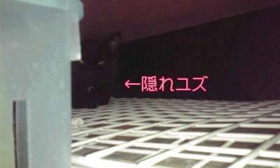 130314 yuzu