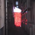 Photos: 赤幕