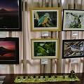 Photos: 黒鯛ちゃんの作品とテーブルは家内の作品