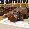 Photos: 小学校の展覧会(子供たちのシュロ皮作品)
