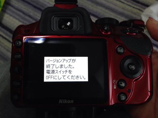 Photos: 2014-02-02