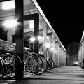 写真: parking area for bicycles
