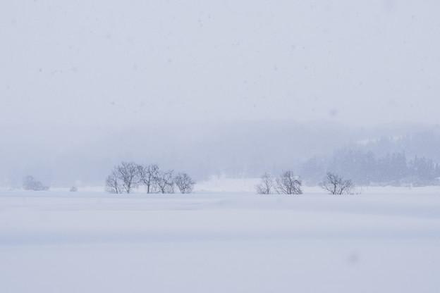 雪の波に咽び揺られ