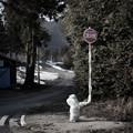 Photos: 消火栓の防寒着