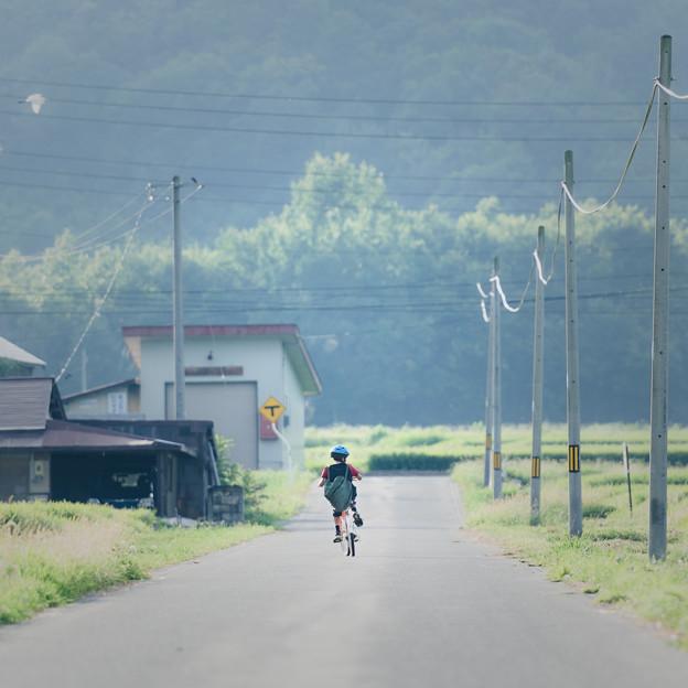 Photos: 帰路の少年