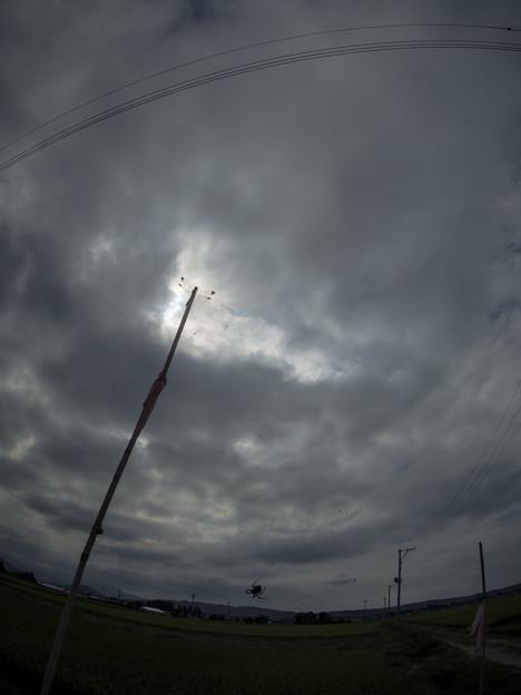曇天を仰ぐ