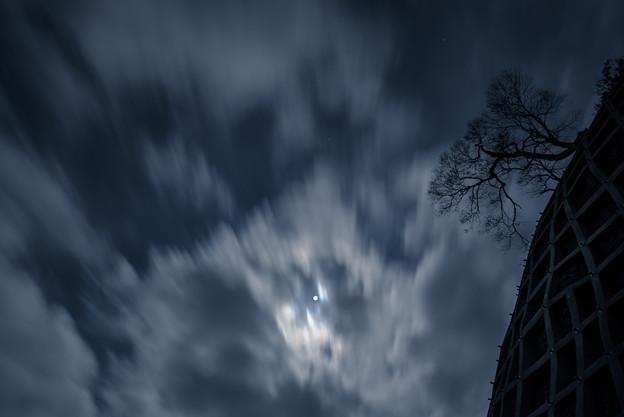 月と僕の狭間で