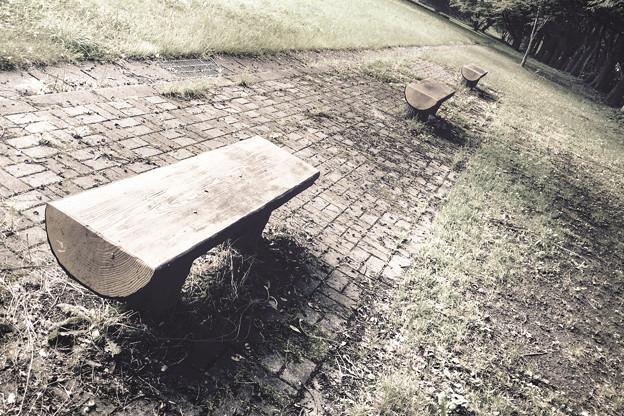 その公園のベンチ