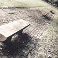 Photos: その公園のベンチ