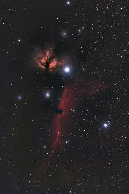 写真: 燃木星雲・馬頭星雲