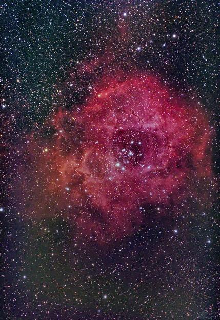 光害地で撮るシリーズ No.4 - バラ星雲