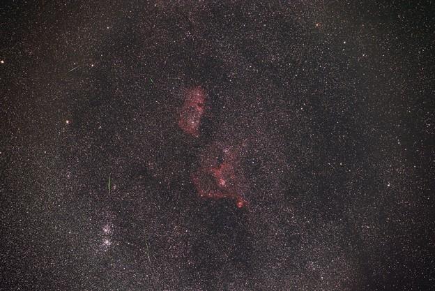 流星雨を夢見る胎児