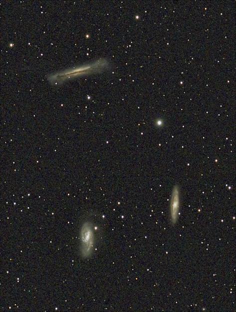 三つ子銀河 ≪トリミング≫