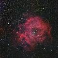 写真: 光害地で撮るリーズNo.12 - バラ星雲
