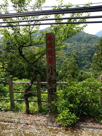 小和田駅15
