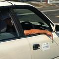 Photos: 個人タクシーは治外法権?