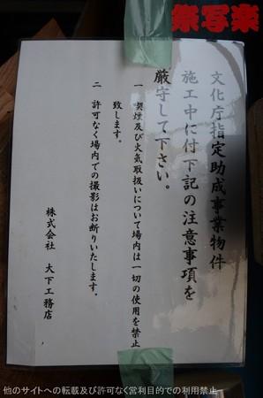DSC_6633