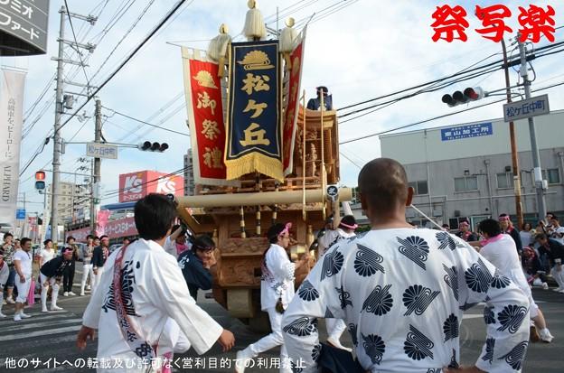 Photos: DSC_6035