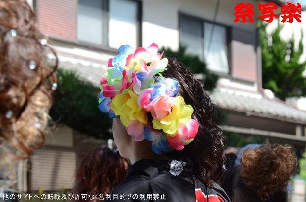 Photos: DSC_2900