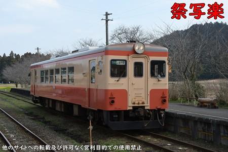 DSC_4846