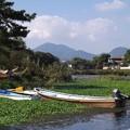 Photos: 江津湖 (熊本市)