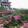 仁田峠 (雲仙国立公園)