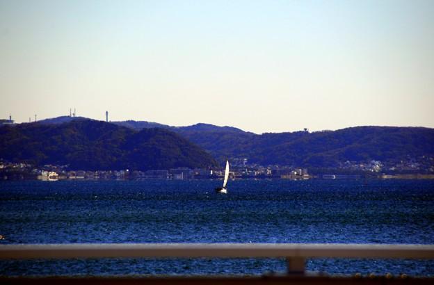 2013-11-13 ニコン 江ノ島 023