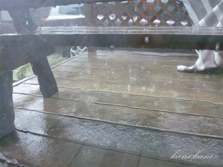 2012 / 09 / 02 ゲリラ豪雨
