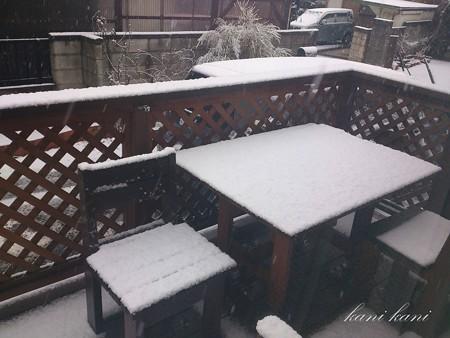 2013/1/14 大雪