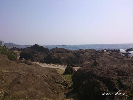 野島崎海岸
