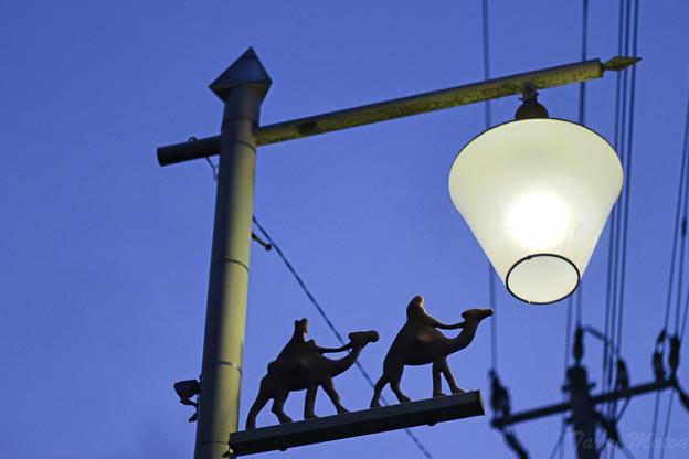 月とラクダをモチーフにした街路灯