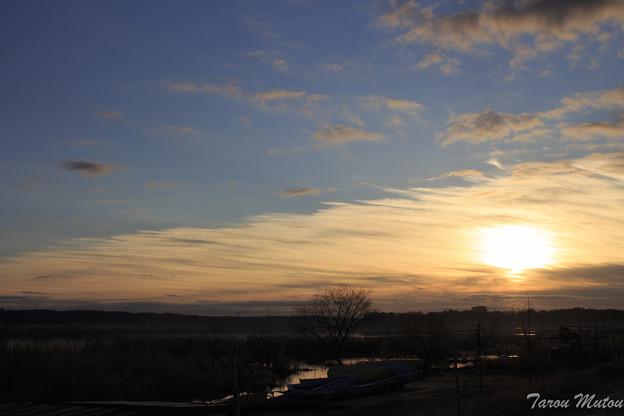 朝日に染まる印旛沼
