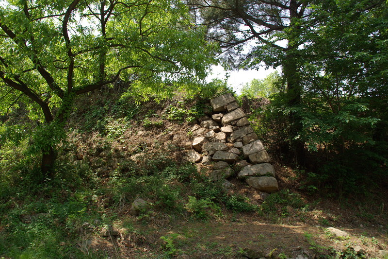 亀浦倭城の石垣4