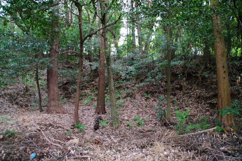 奈良盆地の城跡では屈指の土塁