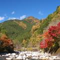 Photos: 紅葉もそろそろ終盤