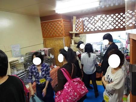 2012.10.20譲渡会