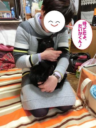 2013.1.17 たいが&里親様