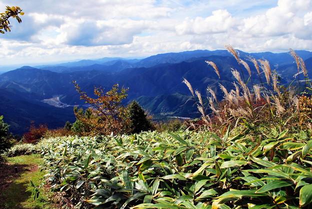 写真: 泉ケ山の眺望 ♪