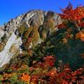 写真: 大山登山、三鈷峰 ♪