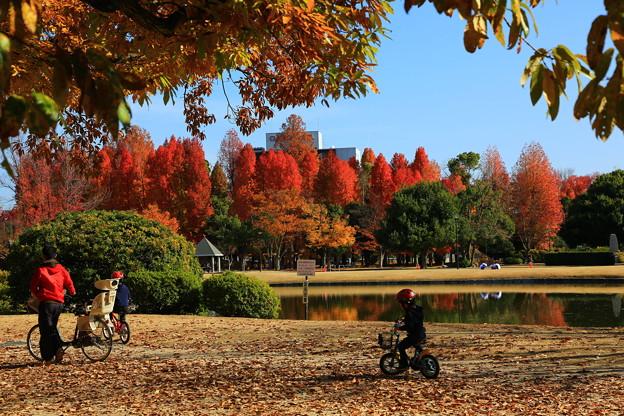 岡山市総合グラウンド公園 ♪