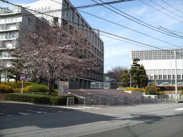 Photos: 学校